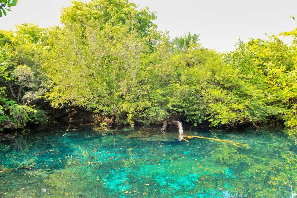 Indigenous Eyes Ecological Reserve