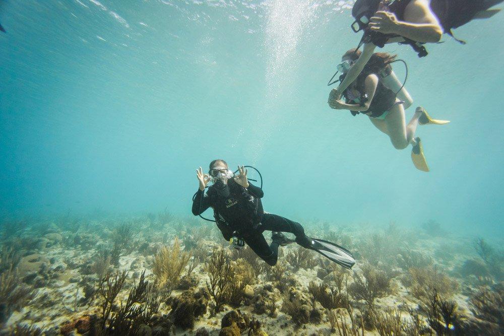 Mergulhar com Snorkeling