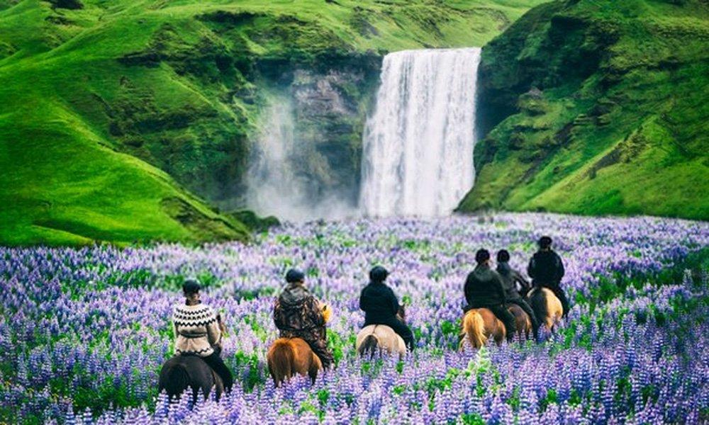 Equitação Islândia