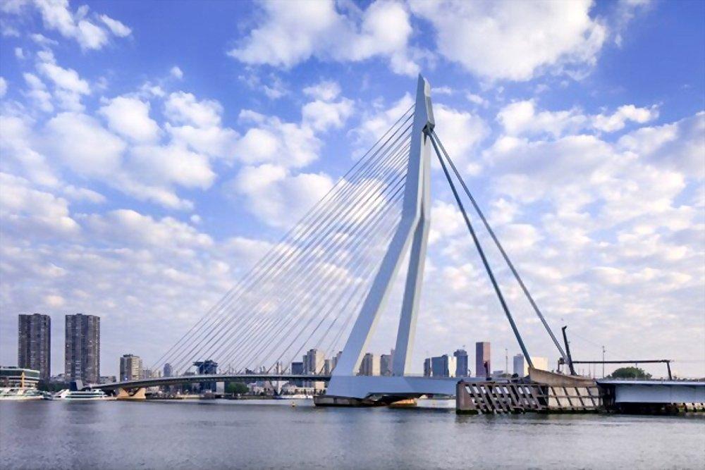 Ponte Erasmus